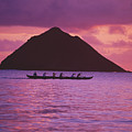Outrigger Canoe Team by Tomas del Amo - Printscapes