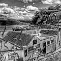Over The Rooftops At Portree In Greyscale 2 by Joan-Violet Stretch