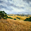 Overcast June Morning by Laura Iverson