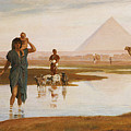 Overflow Of The Nile by Frederick Goodall