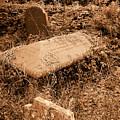 Overgrown Graves by Phil Panton