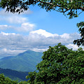 Overlook On The Pisgah Trail by Patricia Motley
