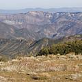 Overlooking Santa Paula Canyon by Rich Reid