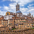 Overlooking Siena And The Duomo by Carolyn Derstine