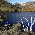 Overlooking Wombat Pool by Nicholas Blackwell