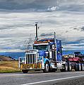 Oversize Load by Theresa Tahara