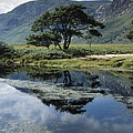 Owenveagh River, Glenveagh National by The Irish Image Collection