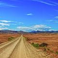 Owhyee Desert by Robert Bales