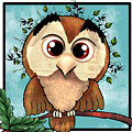 Owl by Julie Atkins