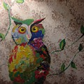 Owl by Laura Wright
