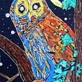 Owl Light by Jayne Kerr