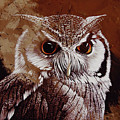 Owl Painting  by Gull G