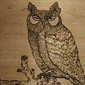 Owl Pyrography by Thomas Cunningham