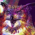 Owl The Female Eagle Owl Bird  by PixBreak Art