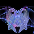 Owleus Barneous Abstractacus by Andy Young