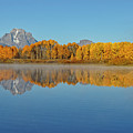 Oxbow Bend First Light  by Wes and Dotty Weber