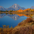 Oxbow Bend by Idaho Scenic Images Linda Lantzy