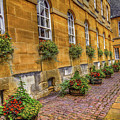 Oxford Spring by Rogermike Wilson