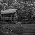 Ozark Cabin by Larry Pegram