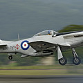 P-51 Mustang by Barry Culling
