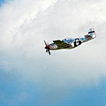 P-51d Mustang by Murray Bloom