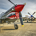 P40 Warhawk And P51d Mustang On The Ramp by John King