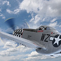P51 In The Clouds by Gill Billington