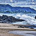 Pacific Coast by Dieter  Lesche