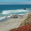 Pacific Coast View IIi by Suzanne Gaff