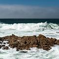 Pacific Coast by Wim Slootweg