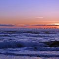 Pacific Flight Oregon Dunes by Kristen Vota
