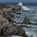 Pacific Grove Seascape by Stan and Anne Foster