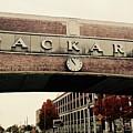 Packard Plant by Deborah Magasark