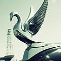 Packard Swan Hood by Joel Witmeyer