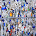 Packed Plastic by Nareeta Martin
