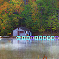 Paddle Boats On The Lake by Amy Jackson