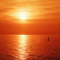 Paddle Surfer Sunset by Vince Cavataio - Printscapes