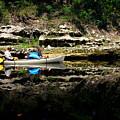 Paddle The Suwannee by Barbara Bowen