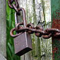 Padlocked Gate by Alan Look