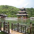 Pagoda by Angela Siener