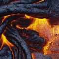Pahoehoe Lava Texture by Ron Dahlquist - Printscapes
