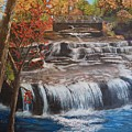 Paine Falls by Donna Cook