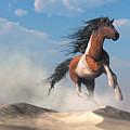 Paint Horse In The Desert by Daniel Eskridge