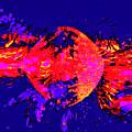 Paintball Splat by James Stoshak