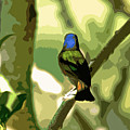 Painted Bunting Cutout by Dale Chapel