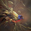 Painted Bunting by Ruth Stromswold