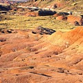 Painted Desert 1 by Patricia Bigelow
