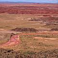 Painted Desert #3 by Robert J Caputo