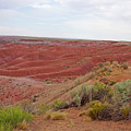 Painted Desert 6 by Florine Duffield