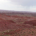 Painted Desert 7 by Florine Duffield